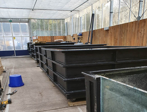 KWB Quarantine Area expands